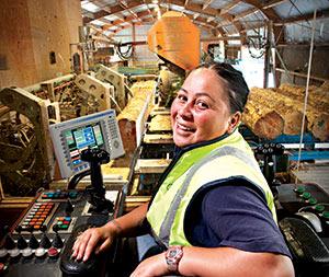 Careers In Wood Career Field Iresearchnet