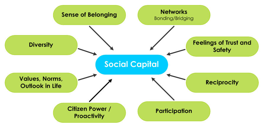 Image result for social capital