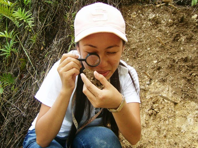 soil scientist career information