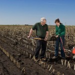 Soil Conservationist and Technician Career