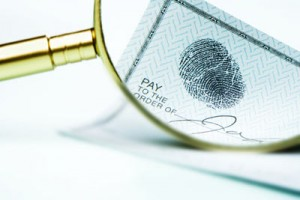 Forensic Accountants and Auditors