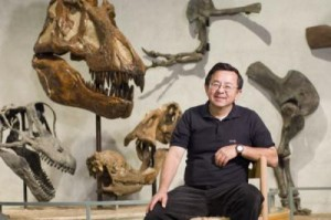 Museum Director and Curator Career