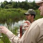 Naturalist Career