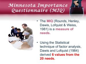 Minnesota Importance Questionnaire