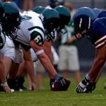 Professional Athlete Career (Team Sports)